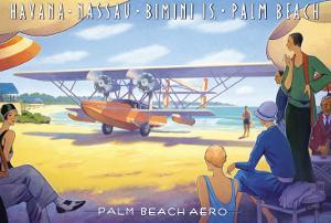 Palm Beach Aero by Kerne Erickson