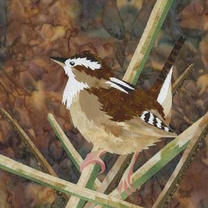 Marsh Wren by Kestrel Michaud