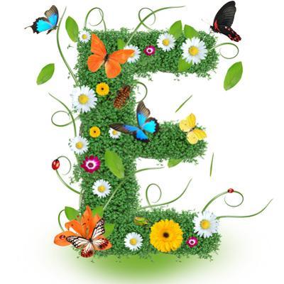 "Beautiful Spring Letter ""E"" by Kesu01"