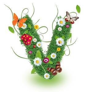 "Beautiful Spring Letter ""V"" by Kesu01"