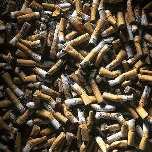 Cigarette Butts by Kevin Curtis