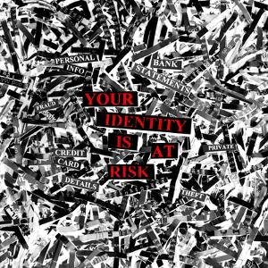 Identity Fraud by Kevin Curtis