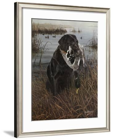 A Friend in the Marsh