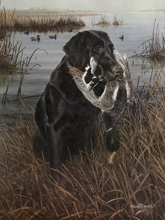 A Friend in the Marsh by Kevin Daniel