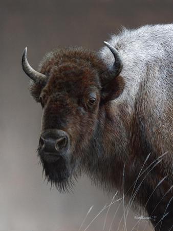 American Icon- Buffalo