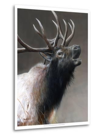 American Icon- Elk