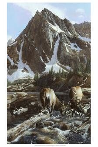 Mountainside Elk II by Kevin Daniel