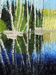 Birch Tree Reflections by Kevin Dodds