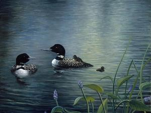 Virginias Loons by Kevin Dodds