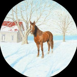Winter on the Farm by Kevin Dodds