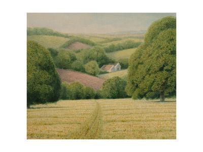 New Cut Meadow, 2008