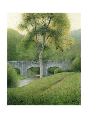 Tree & Bridge, Dartmoor, 2008