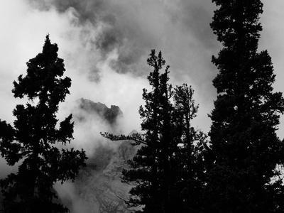 Colorado Mountain Landscape with Trees and Clouds, Sangre De Cristo Range in Black and White
