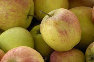Canada, British Columbia, Cowichan Valley. Close-Up of Red and Green Apples by Kevin Oke