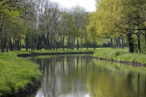 France, Loire. Canal Winding Through Spring Trees and Foliage by Kevin Oke