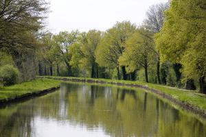 France, Loire. Trees Lining the Canal Lateral a La Loire by Kevin Oke