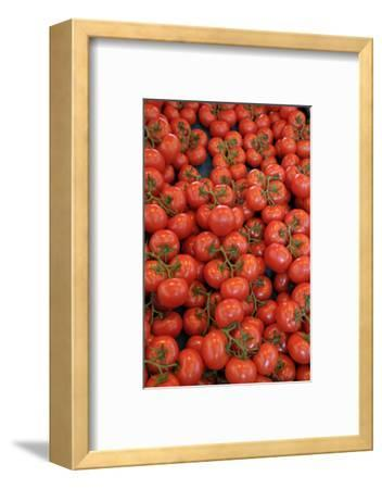 France, Paris. Tomatos, Thursday Market, Boulevard Saint Germain