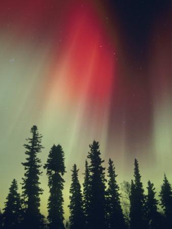 Aurora Borealis, Fairbanks Area, Alaska, USA by Kevin Schafer