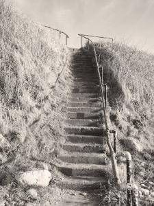 Steps Down to Beach by Kevin Walsh