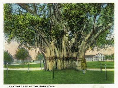 https://imgc.artprintimages.com/img/print/key-west-florida-barracks-banyan-tree-scene_u-l-q1gpi7r0.jpg?p=0