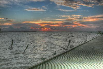 Key West Sunrise Gulls and Pier-Robert Goldwitz-Photographic Print