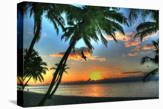 Key West Sunrise VII-Robert Goldwitz-Stretched Canvas Print