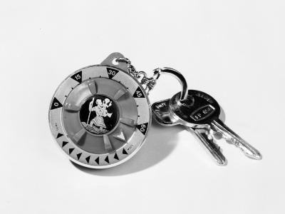 Keyring and Compass-Chaloner Woods-Photographic Print