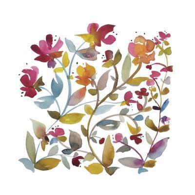 California Wildflowers