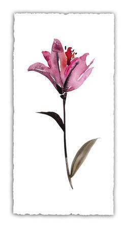 Floral Watercolor II
