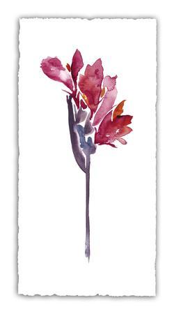 Floral Watercolor V