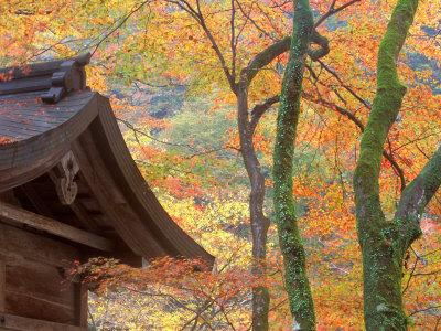 https://imgc.artprintimages.com/img/print/kibune-shrine-kyoto-japan_u-l-p58ock0.jpg?p=0