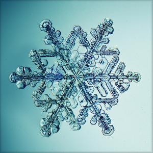 Ice Crystal Snowflake Macro by Kichigin