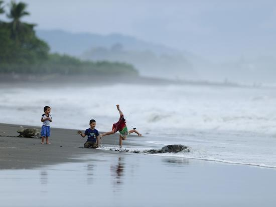 Kids Playing on the Beach While Olive Ridley Sea Turtle Come Ashore-Solvin Zankl-Photographic Print