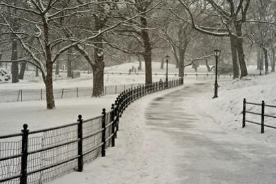 A Blizzard in Central Park by Kike Calvo