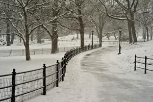 A Blizzard in Central Park by Kike Calvo