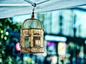 A Golden Cage Hangs in a Farmers' Market in New York's Union Square by Kike Calvo