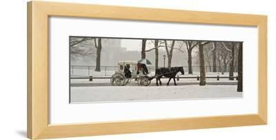 A Horse a Carriage in Central Park During a Blizzard