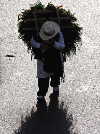 A Silletero Carries Flowers to Sell at the Flower Festival Parade