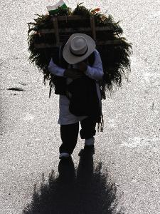 A Silletero Carries Flowers to Sell at the Flower Festival Parade by Kike Calvo