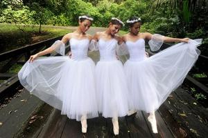 Dancers Gracefully Walking On Soberania National Park In Panama by Kike Calvo