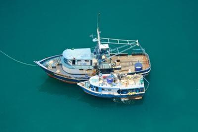 Fishing Boats Are Moored Side by Side in the Green Pacific Waters by Kike Calvo