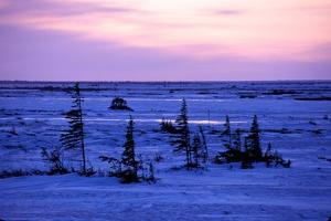 Hudson Bay Freezing Up by Kike Calvo