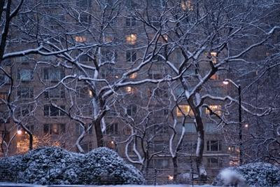 Manhattan Buildings and Trees Along Central Park During a Blizzard at Night by Kike Calvo