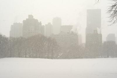 Manhattan Buildings and Trees in Central Park During a Blizzard by Kike Calvo