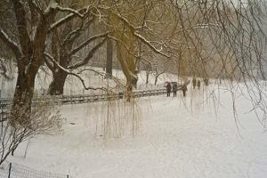 People Walking in Central Park During a Blizzard by Kike Calvo