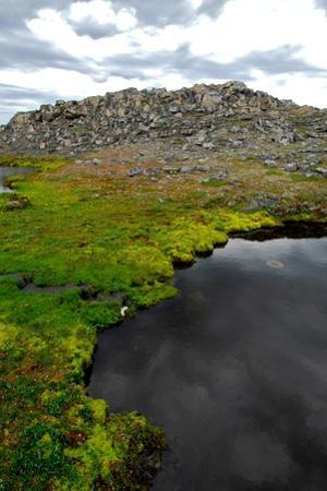 Remains of Thule Culture, Ancestors of Today's Inuit, on Opingivik Island by Kike Calvo