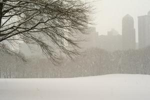 The Sheep Meadow in Central Park During a Blizzard by Kike Calvo