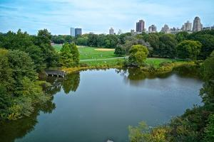 Turtle Pond and the Great Lawn in New York City's Central Park by Kike Calvo