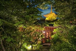 View of the Three Level Yasaka Pagoda from its Gardens by Kike Calvo