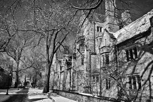 Winter Blizzard at Yale University by Kike Calvo